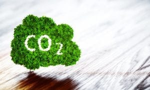 CO2 ecology graphic