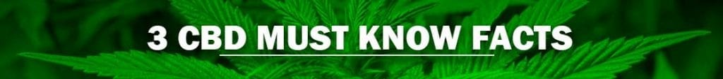 3 CBD Must Know Facts