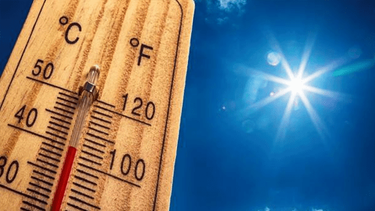 Keep CBD Oil out of extreme temperatures