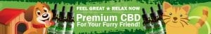 pet oil banner green animated pets