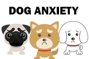 three animated sad dogs