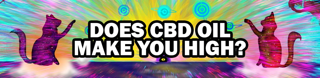"""trippy banner for """"does cbd oil make you high?"""" article"""