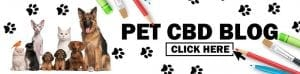 Pet CBD Blog - various cats and dogs