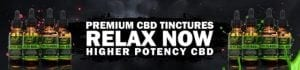 High Potency CBD Oil | Hemp Bombs Pure CBD Oil