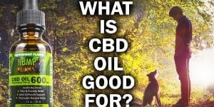 "photo with 600mg cbd oil from hemp bombs, says ""what is cbd oil good for"""