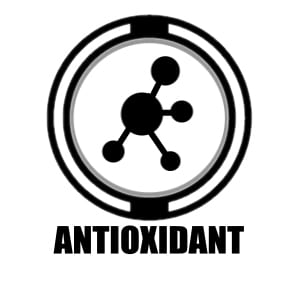 """Circle icon with a molecular structure in it with """"antioxidant"""" underneath"""
