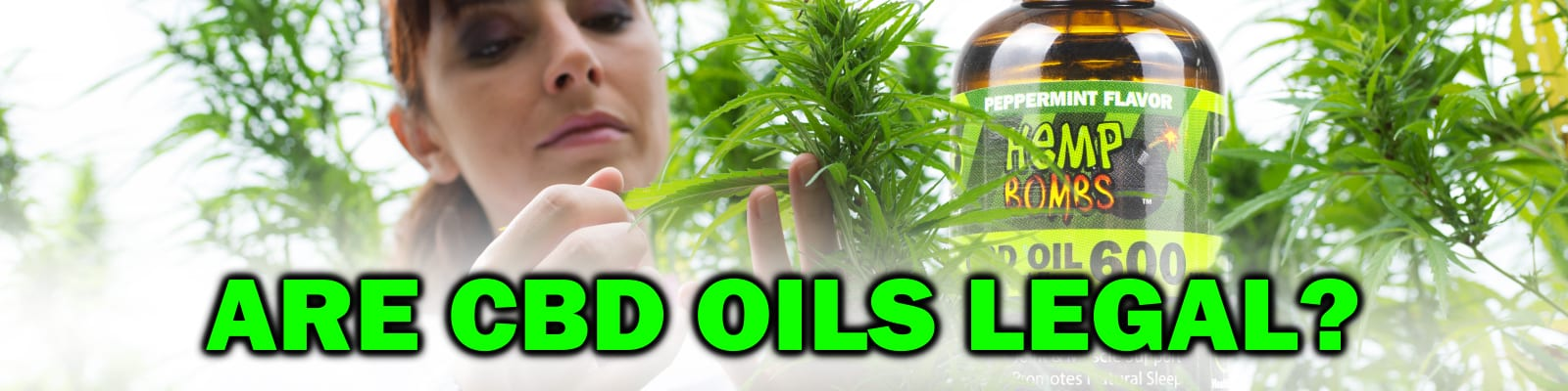 Are CBD Oils Legal with a peppermint 600mg CBD Oil and a girl examining a Hemp plant