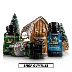 CBD Gummies for Holiday Gifts