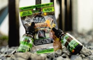 cbd pet products including cbd pet oil and cbd dog biscuits