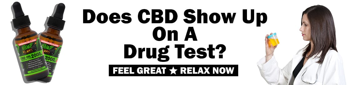 Does CBD Show Up on a Drug Test? | Hemp Bombs Premium CBD