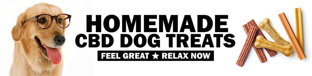 Homemade CBD Dog Treats
