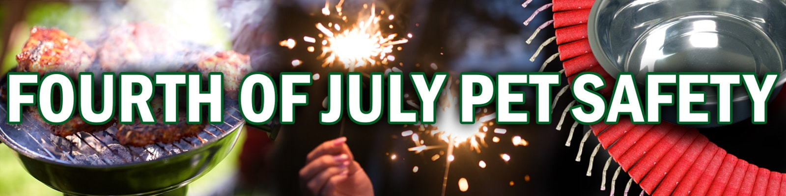 Fourth of July Pets and Fireworks safety